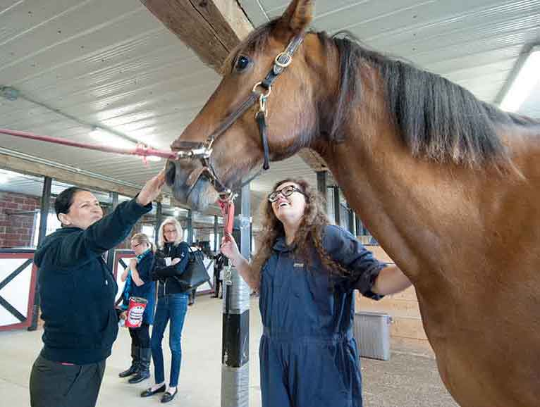 Bob the horse is petted by Pari Ghazi, Student Services Co-ordinator